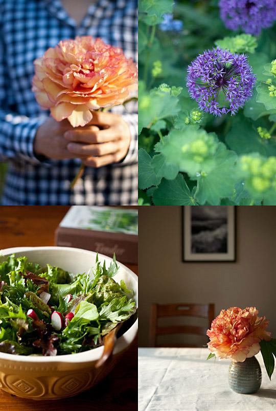 peony, allium and garden salad