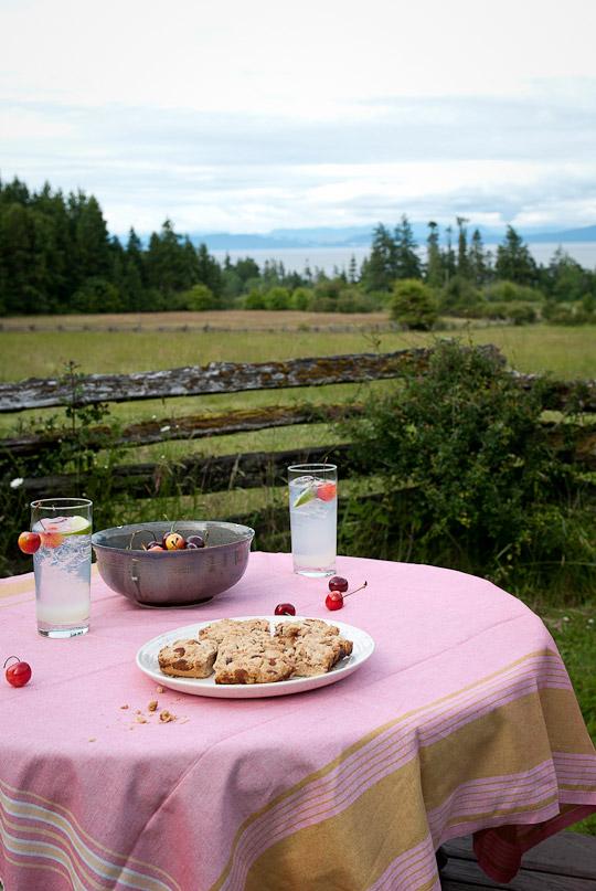 rhubarb bars and cherries