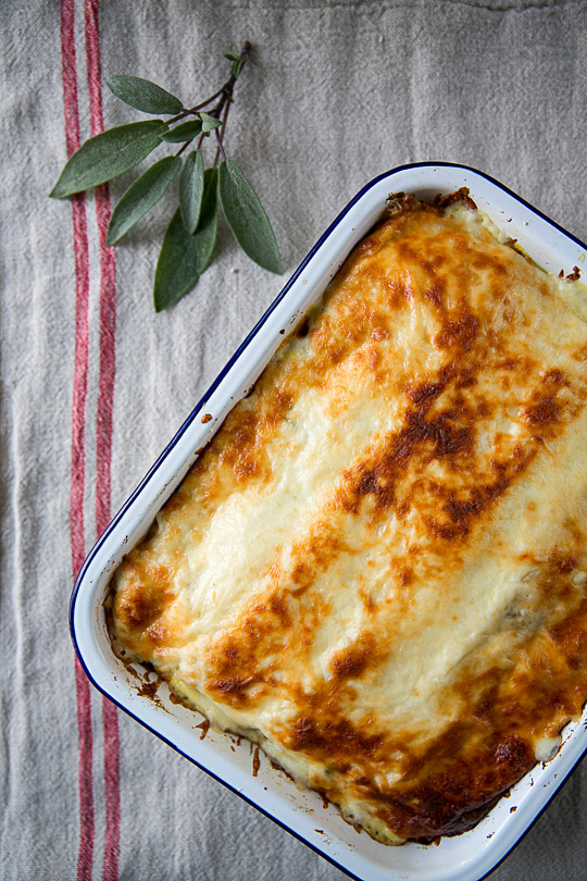 lasagna with pumpkin and sage infused Béchamel sauce