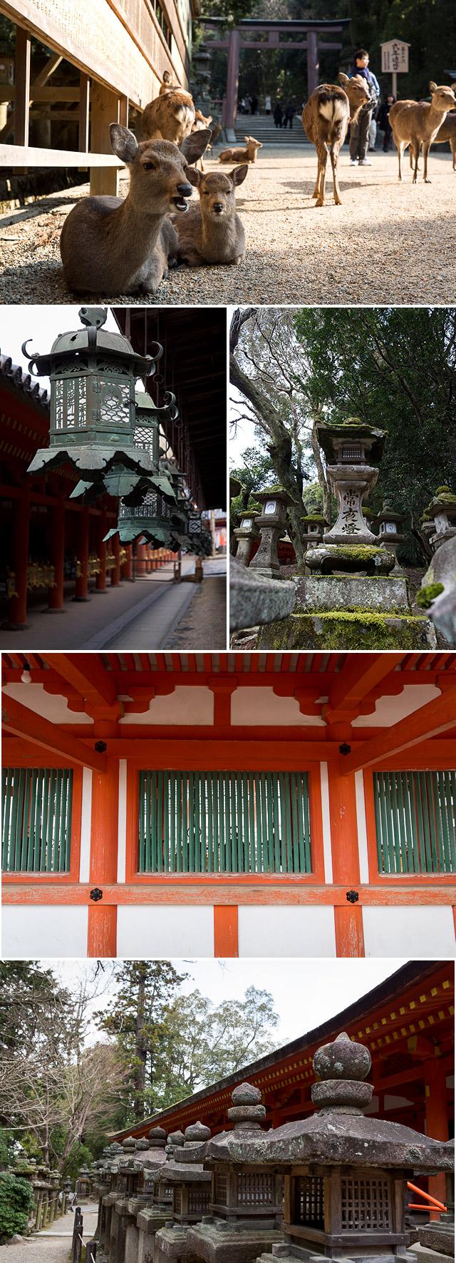 Kasugataisha, Nara
